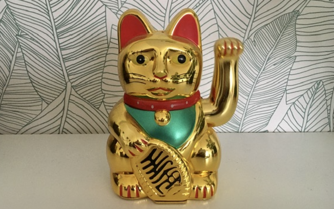 The Lucky Chinese Cat